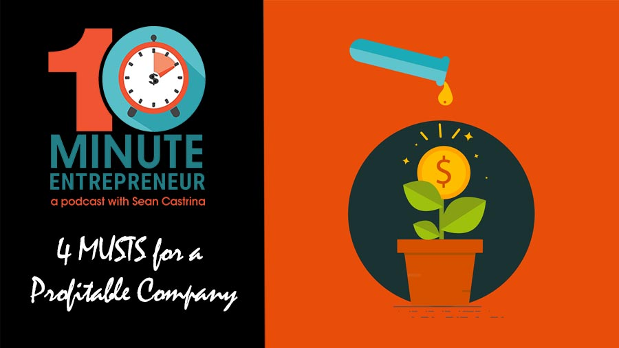 Ep 299: 4 MUSTS for a Profitable Company